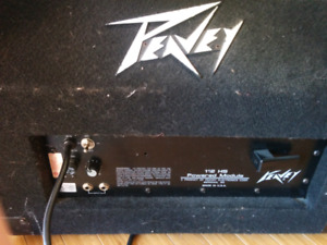 Peavey stage monitor