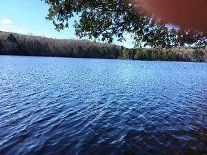 Ste-Thècle, magnifique terrain bord de l'eau, lac Croche