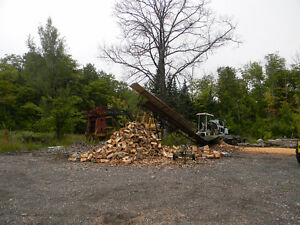 Wood Lot Machinery For Sale