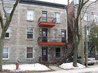 7 1/2, 1250pc, 4716 rue Adam Montréal ( Hochelaga-Maisonneuve )