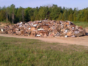 Stump Grinding - Wood and Construction Waste Removal Stratford Kitchener Area image 7