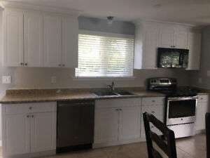 Almost new kitchen cabinets for sale
