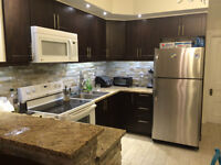 Renovated 4 bedroom - July 1st or before - McGill