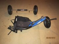 Peter Lynn competition buggy
