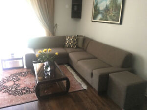 Sectional coach + coffee table (10/10)