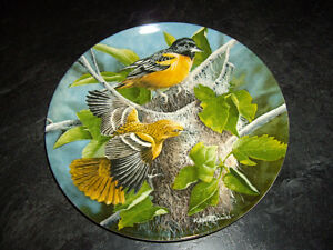 6 COLLECTOR'S PLATE OF BIRDS