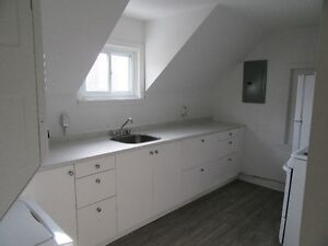 1 bedroom apartment on Elgin ST. Newly Renovated New Appliances