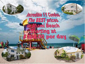 Excellent 1/1 Condos at Very Affordable Prices