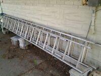 ladder, extension 36 feet