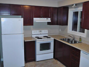 Awesome 2 bdrm condo, modern decor, great location! London Ontario image 10