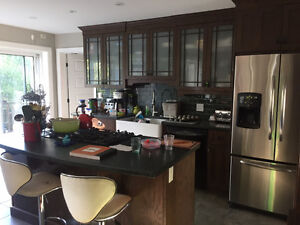 kitchen - cabinets/counter top/island/oven/gas cooktop/sink/dish