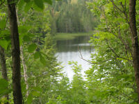 1 acre vacant waterfront lot on Long Lake, N-West of Englehart