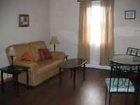 Construction workers  2 bedroom furnished apartment for rent
