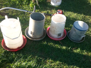 Chicken feeders and waters