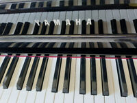 Piano and Voice Lessons - In Studio or Online