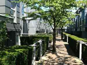 Furnished 1 Bedroom and Large Work Space Rooftop Townhouse