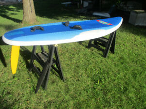 Windsurf GO Board 185L with 8.4 sm Neil Pryde Sail and Rigging.