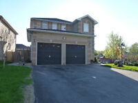 Bright 1 bedroom walkout basement apartment in South Barrie