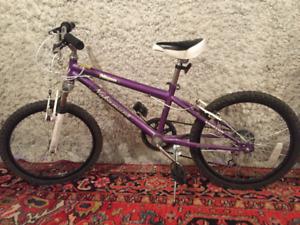 Nakamura Meyou 6 Speed Junior Girl's Bike