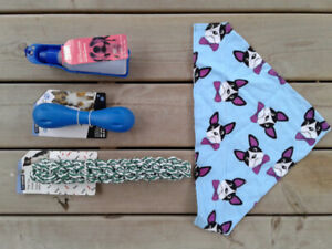 dog toys, water bottle and dog scarf