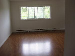 1 Bedroom Apartment in Timberlea