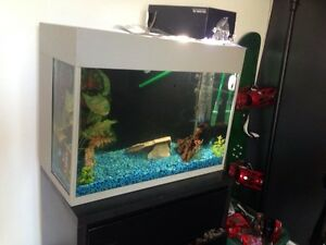 45 gallon tank with everything needed and more