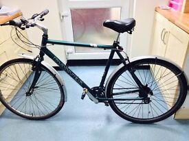 Hybrid light bike