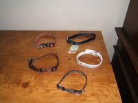 5  PUPPY OR SMALL DOG COLLARS