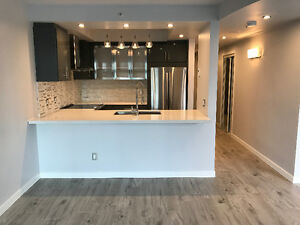 NEWLY RENOVATED 2 LEVEL PENTHOUSE IN DOWNTOWN FOR LEASE