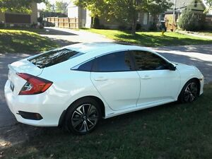 WINDOW TINTING OCTOBER SALE Peterborough Peterborough Area image 5