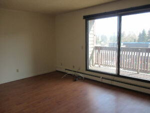 LARGE ONE BEDROOM SUITE WITH A BALCONY FOR RENT
