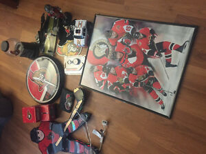 Ottawa senators stuff