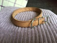Real leather collar brand new