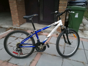 Selling 2 bikes for $40