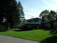 Beautiful Home for Sale in Fonthill - Quiet Neighbourhood
