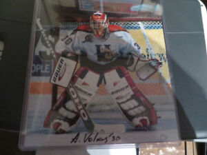 Halifax Mooseheads -Alexei Volkov Autographed Picture