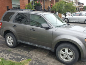 2010 Ford Escape XLT  6 Cylinder Automatic