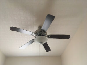Ceiling Fan with dome light