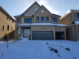 """Brand new house for rent in Caledonia 50"""" 3 car garage 4 bedroom"""