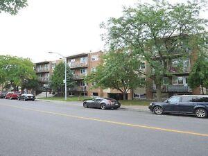 3 1/2 appartements à Lasalle disponible immediat. ou plus tard