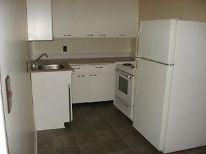 Large One Bdrm Apt - Close to Waterfront