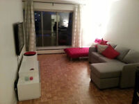 Tres Beau 3 ½ pour Oct / Amazing 1 bed room appartment for OCT