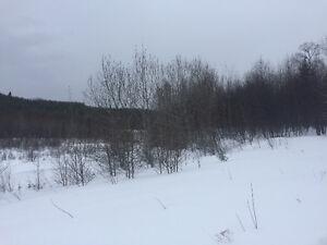terrain à Ferland-Boileau