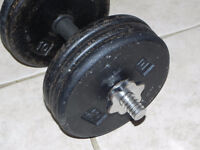 Set: 2x65 lbs plate-loading dumbbells for sale