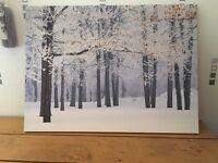Beautiful winter scene canvas pic