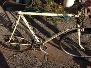 Vintage 10 Speed Raleigh Record