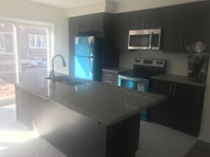 BEAUTIFUL TOWN HOME FOR LEASE IN MILTON