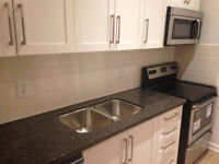 Awesome Fully Renovated Parkdale 2 Bdrm - Available Now