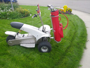 Electric golf cart - 6 new battery's