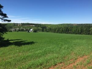Acreage on South Melville Road / Mill Road